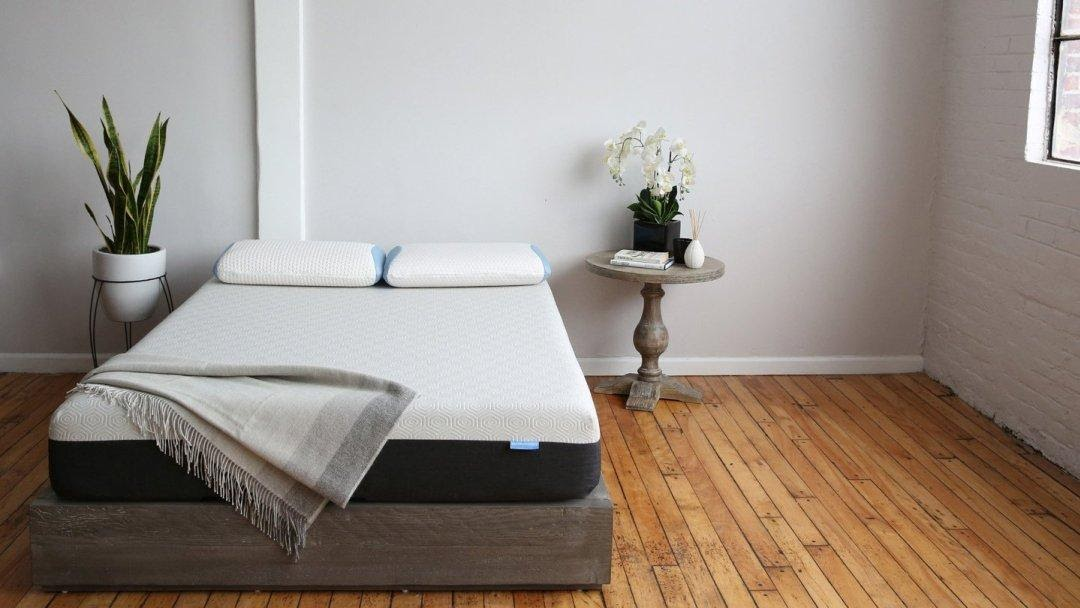 Plants in the Bedroom: Pros and Cons