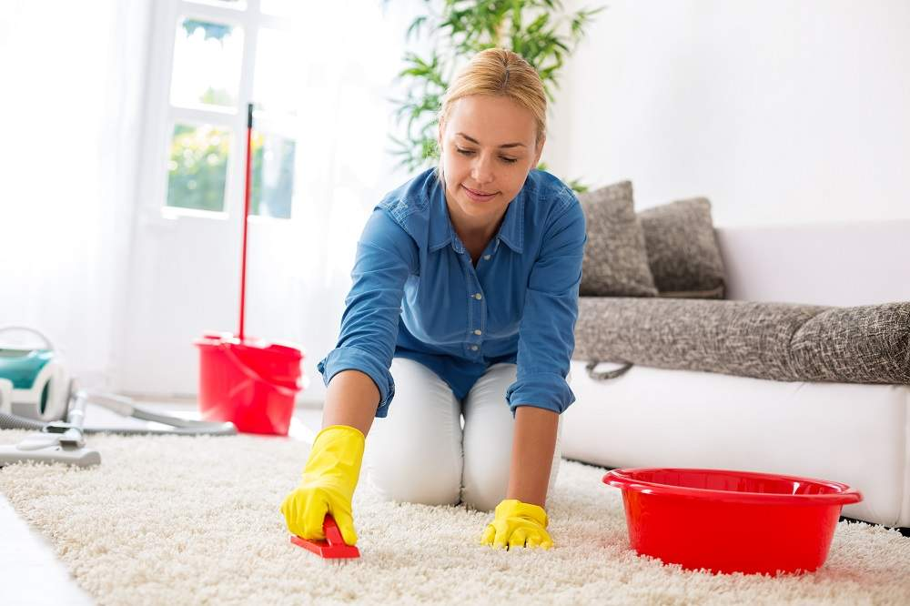 Get the Best Carpet Cleaning Service