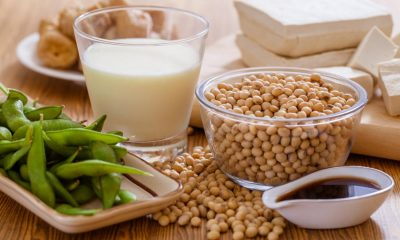 Soy Protein Benefits