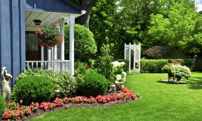 Enhance Your Garden Area With These Tips