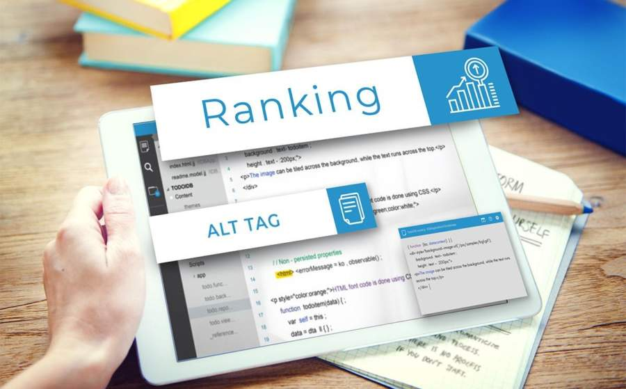 Why Alt Tag Is a Vital Piece for The Highest SEO Ranking