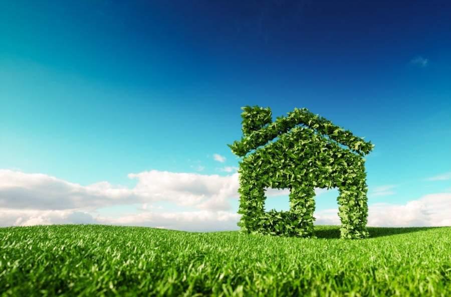 Eco-Friendly Ideas for Home